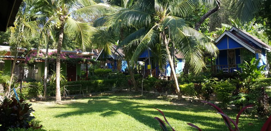 A grassy area bordered by wooden bungalows with palm trees