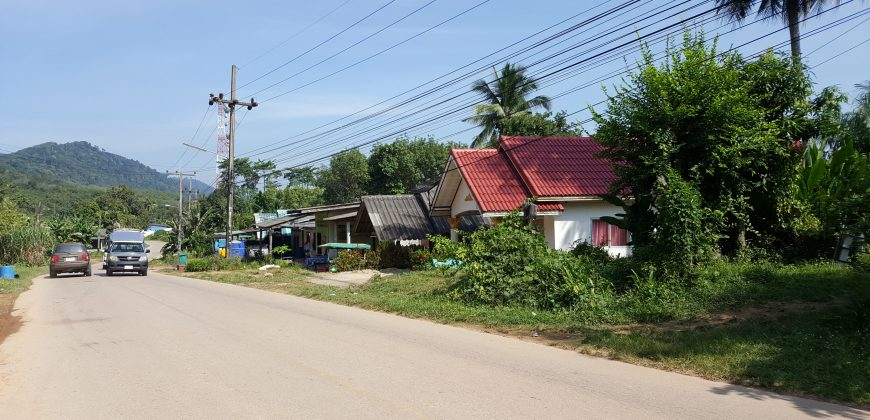 A row of basic houses by the road with a hill in the background and passing traffic. It's remote and dominated by tropical trees