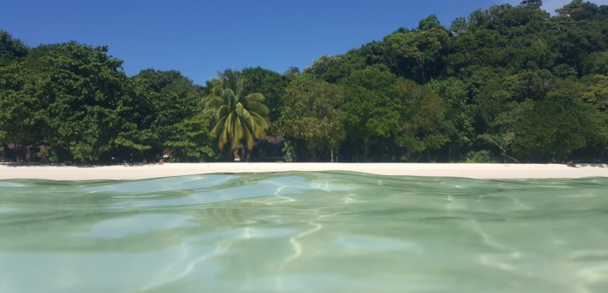 A tropical island with lush green trees and white sand, taken from the water at water level, the sea is perfectly clear