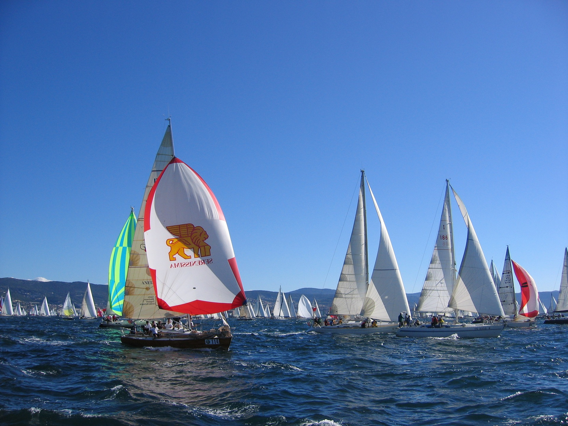Boats racing in the Solent on a sunny day