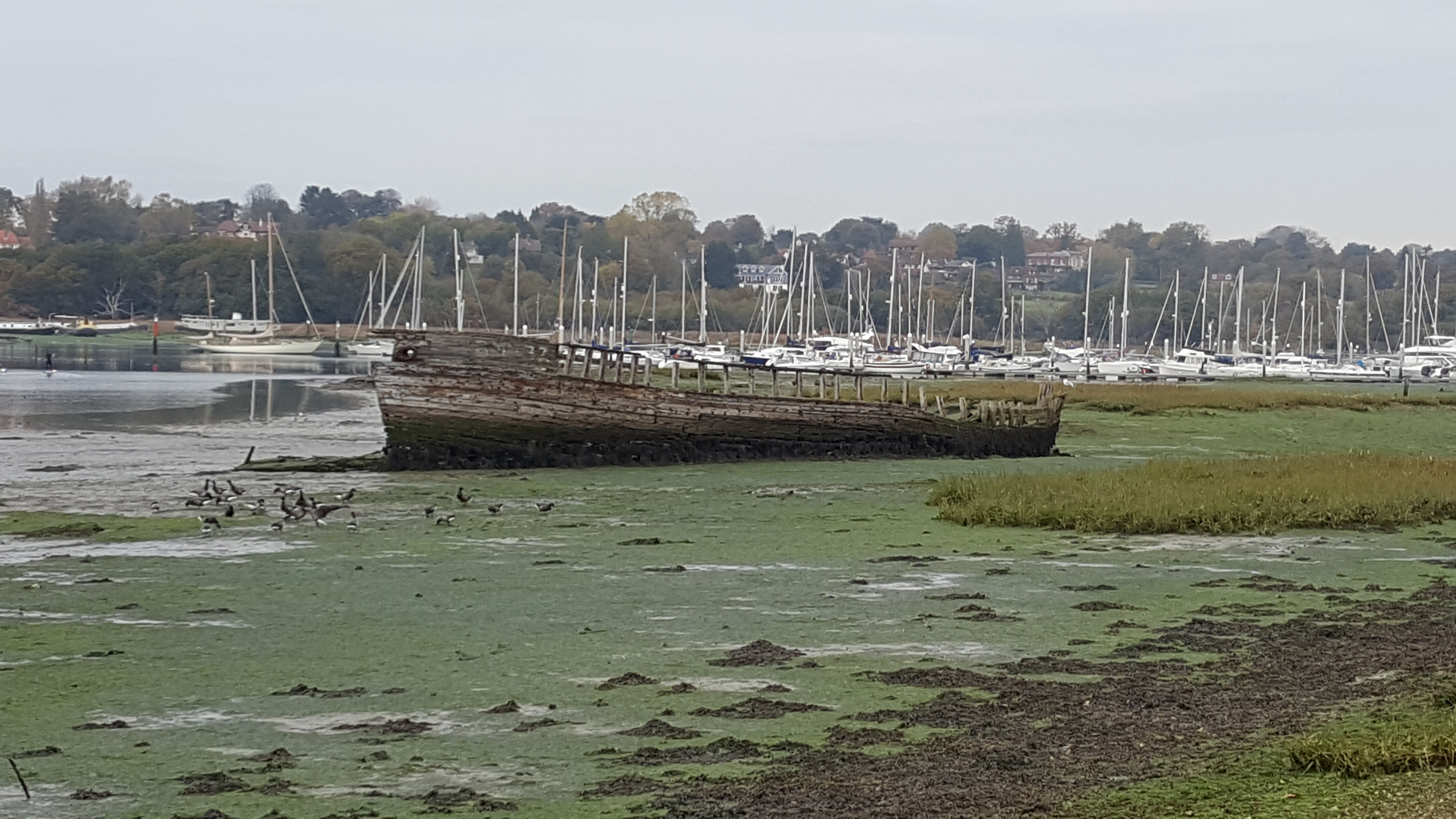 The carcass of a boat on the shore of the River Hamble taken from the Warsash side, with Mercury Marina in the background