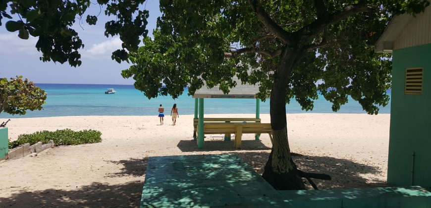 West Bay public beach with a big tree, brightly painted shaded seating and the beach and see in the background