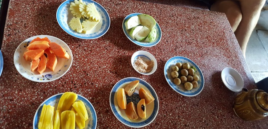 Small plates of various tropical fruit fill a table, for us to try
